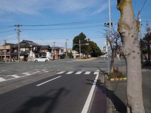 JR山田上口駅前のケヤキ並木