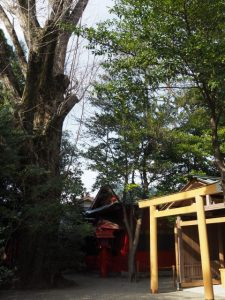 須原稲荷神社、須原大社(伊勢市一之木)