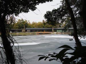 一部が凍りついた外宮勾玉池