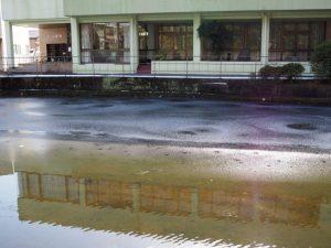 船江上社の朧ヶ池(雪の名残を求めて)