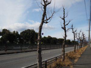 国道25号にて(四日市市川尻町)