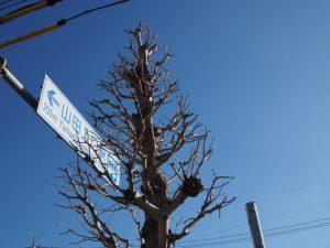 八劔稲荷大明神の近くには「200m ←山田上口駅」の案内板