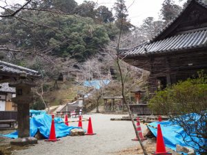 台風21号で倒壊した回廊跡、丹生大師神宮寺(多気郡多気町丹生)