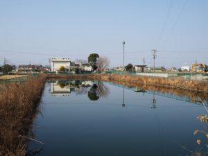 勢京ビジネス専門学校付近の池(伊勢市一之木)