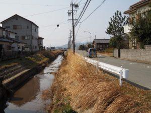菱川(和合橋の上流側)