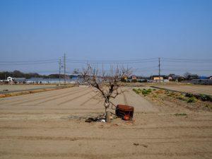 玉城町上水道水源地付近