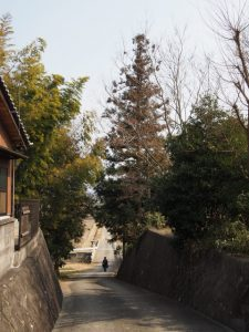 宝泉寺前から汁谷川への坂道(玉城町小社曽根)