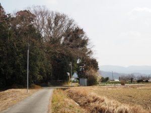 八柱神社付近(伊勢市粟野町)