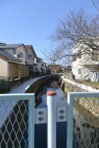 松外垣橋へと続く水路との合流点から小柳川の上流方向遠望