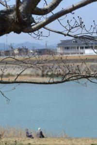 右岸堤防から望む宮川