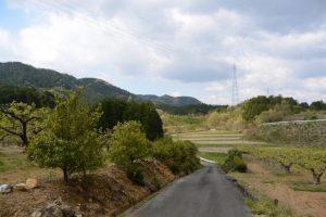 津布良神社(皇大神宮 末社)付近から伊勢自動車道 勢和多気36トンネルへ