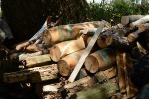 御造替された本殿の鰹木、世木神社(伊勢市吹上)