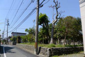 雷電神社(伊勢市小俣町本町)