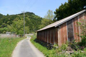 国道42号(JR参宮線松下駅付近)から湿地帯へ続く林道へ