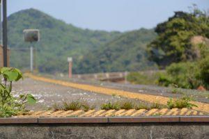 JR参宮線 池の浦シーサイド駅(夏季数日のみ開設される臨時駅)