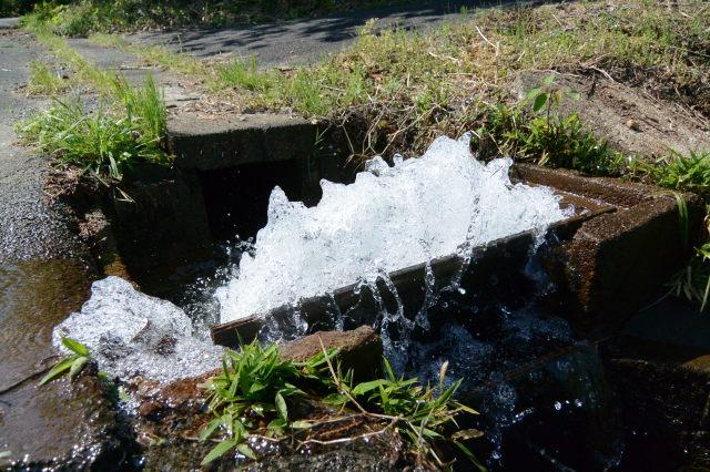 泉貢池からの水が溢れんばかりの用水路(度会郡玉城町積良)