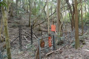 「入林禁止 神宮司庁」の注意看板(外宮々域の西側)