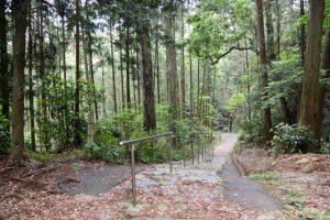 梅香寺旧跡への参道