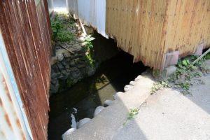 家屋の下を流れる清川(伊勢市浦口)