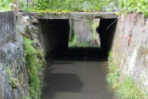 クランクとなり流れる清川