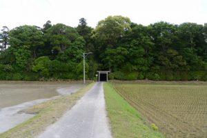 神麻続機殿神社(皇大神宮 所管社)の社叢