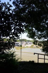 津布良神社(皇大神宮 末社)の社叢から望む玉城町積良の田んぼと家々