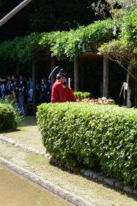 御田祭[おみた](猿田彦神社)2018