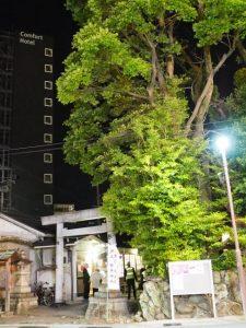 本殿遷座祭を終えた世木神社(伊勢市吹上)