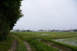 神服織機殿神社(皇大神宮所管社)の参道入口から東方向へ