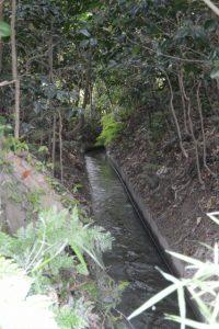 福井水路(神服織機殿神社)の出口付近
