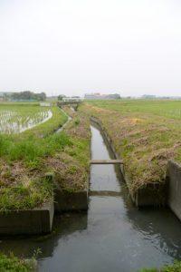 福井水路(神服織機殿神社)の入口付近