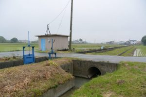福井水路へ流れ込む水路の上流側