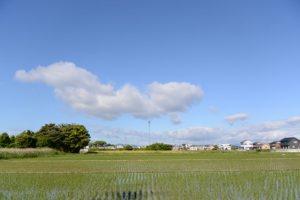 河原神社(豊受大神宮 摂社)付近の風景