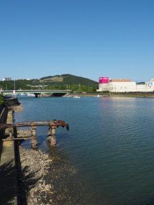安楽島橋から望む加茂川