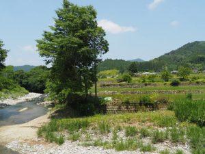 北畠神社付近からの風景(津市美杉町上多気)