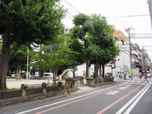 生祥児童公園(D→E)