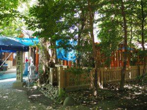 参道鳥居にブルーシートが掛けられていた吉王稲荷神社(伊勢市船江)