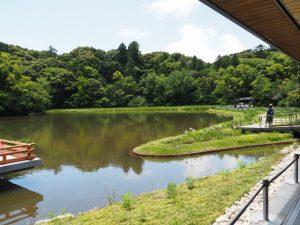 せんぐう館の休憩舎(外宮)から望む勾玉池の菖蒲園