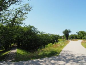 駿河堤と堤防道路(宮川右岸)