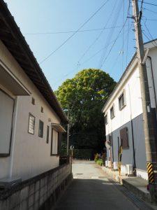 宇須乃野神社(豊受大神宮 摂社)