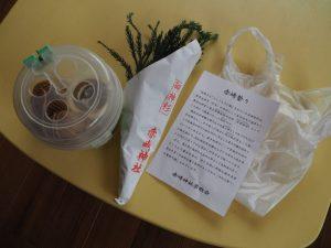 赤崎神社(豊受大神宮 末社)にて授与していただいた御神杉