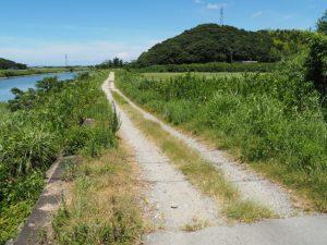堀割橋から五十鈴川の右岸を下流方向へ