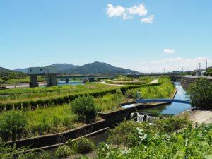 堀割橋より五十鈴川の左岸を上流方向へ
