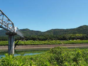 五十鈴川の左岸から神宮神田方向の遠望