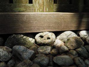 宇治山田神社(皇大神宮 摂社)、那自賣神社(同末社)を同座