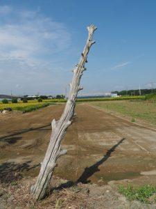 近鉄 山田線 踏切道小俣第八号〜伊勢南北幹線道路