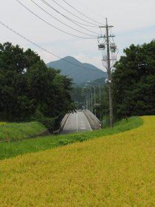 南伊勢大橋(宮川)の遠望