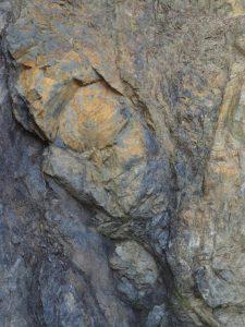 鳥羽竜化石発見地、砥浜海岸(鳥羽市安楽島町)