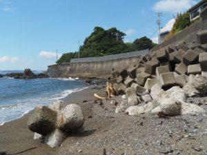 前浜の消波ブロック(鳥羽市国崎町)