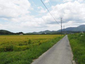 JR参宮線 内宮踏切〜加努弥神社(伊勢市鹿海町)